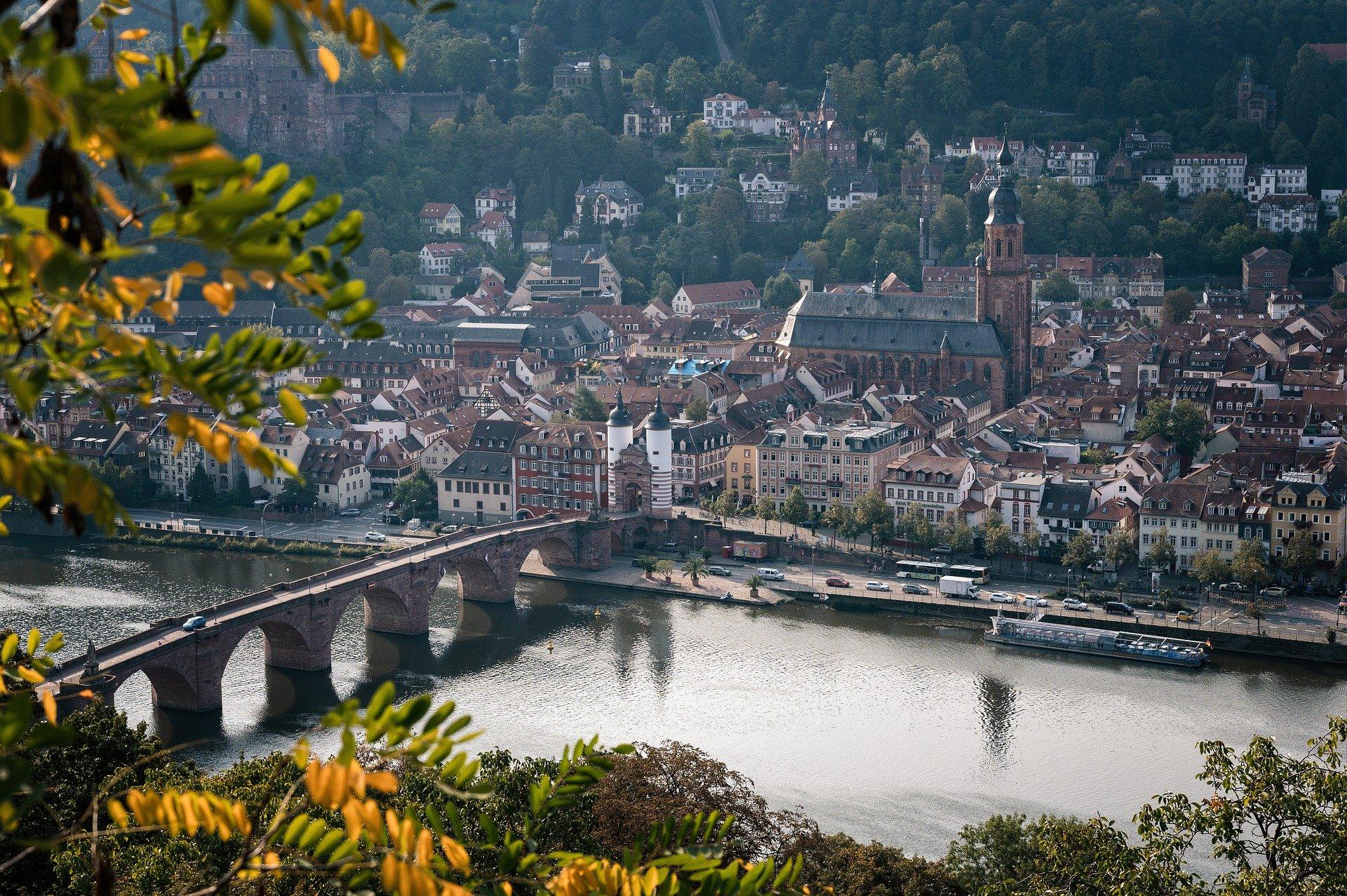 Heidelberg Steckbrief – Flora und Fauna, Geschichte
